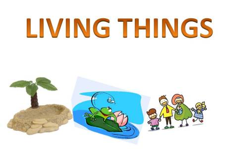 Http Yourcoolschool Wordpress Com Category Science Grade 5 Unit 5 Living Things